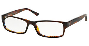 Polo PH2065 5035 TOP BROWN/HAVANA