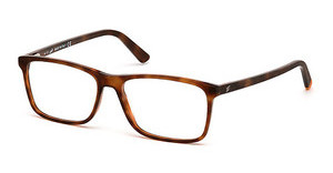 Web Eyewear WE5173 054