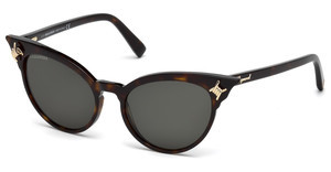 Dsquared DQ0239 52A