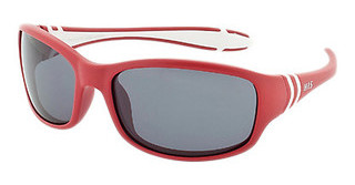 HIS Eyewear HP50102 1 greyred-white