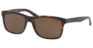Polo PH4098 567373 BROWNSHINY DARK HAVANA